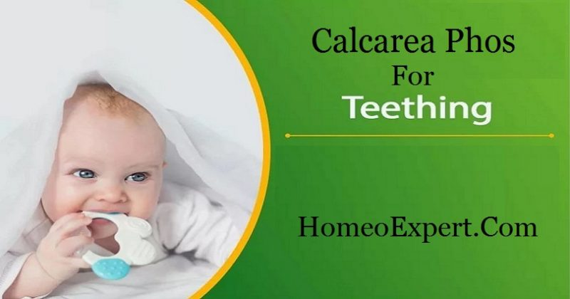 Calcarea Phos for Teething