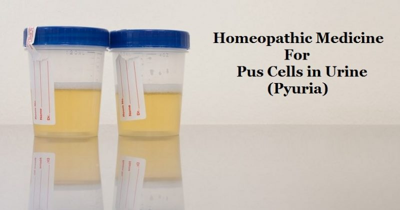 homeopathic medicine for pus cells in urine